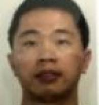 yang, tutor in Ryde, NSW
