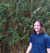 rhys, tutor in Meadowbank, NSW